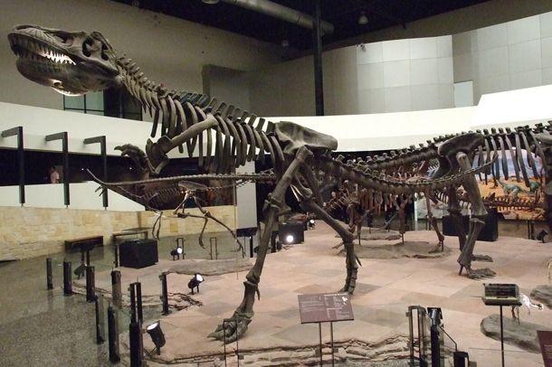 พิพิธภัณฑ์สิรินธร กาฬสินธุ์