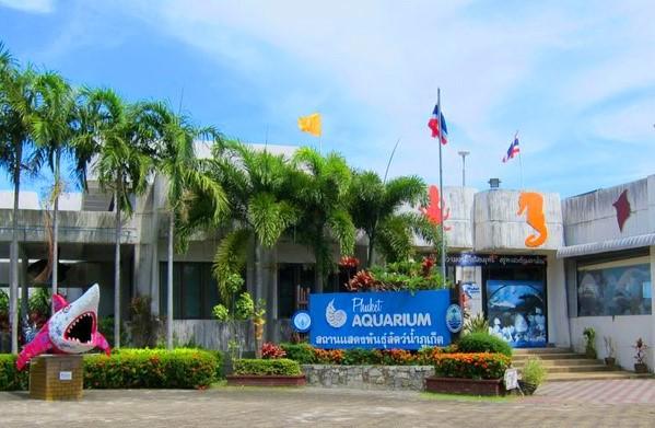 Phuket Aquarium จังหวัดภูเก็ต