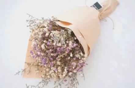ดอกยิปโซ